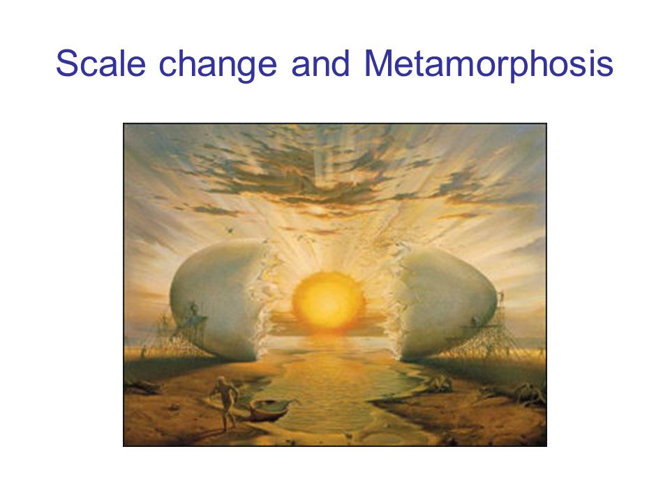 Scale change and Metamorphosis