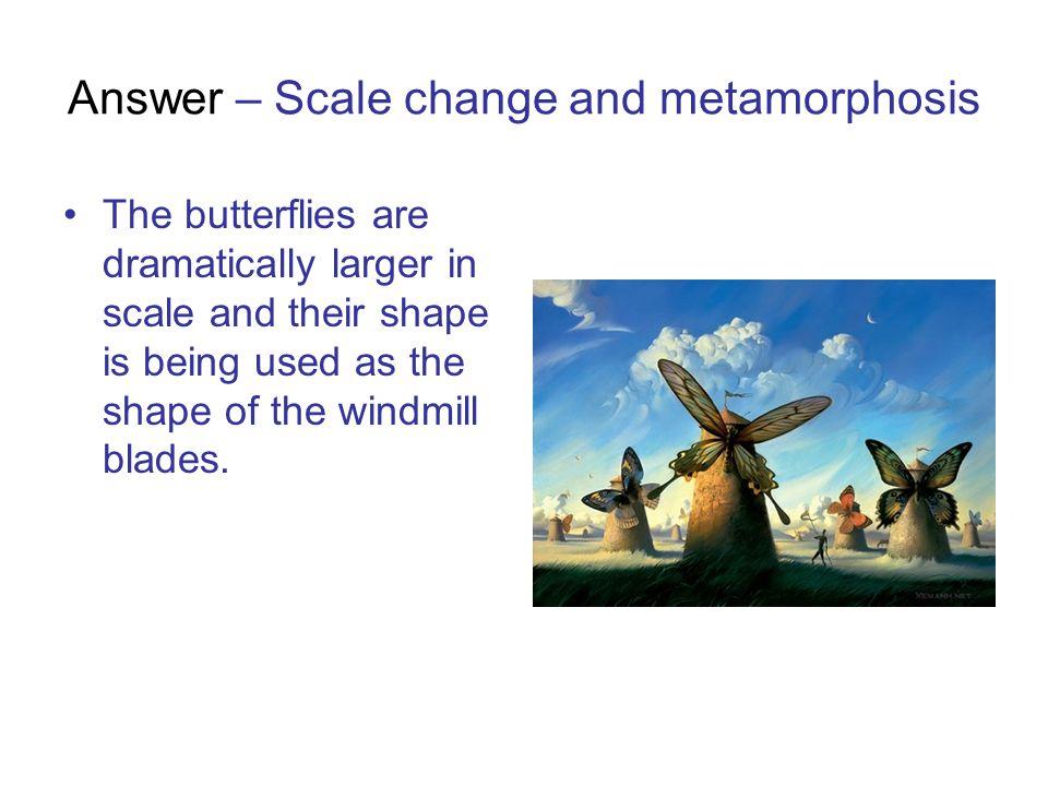 Answer – Scale change and metamorphosis
