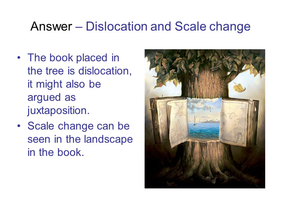 Answer – Dislocation and Scale change