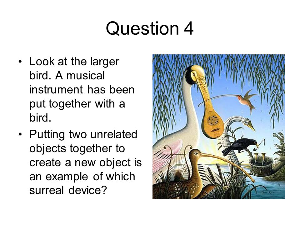 Question 4 Look at the larger bird. A musical instrument has been put together with a bird.