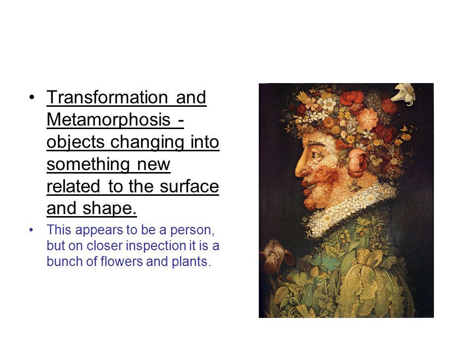 Transformation and Metamorphosis - objects changing into something new related to the surface and shape.