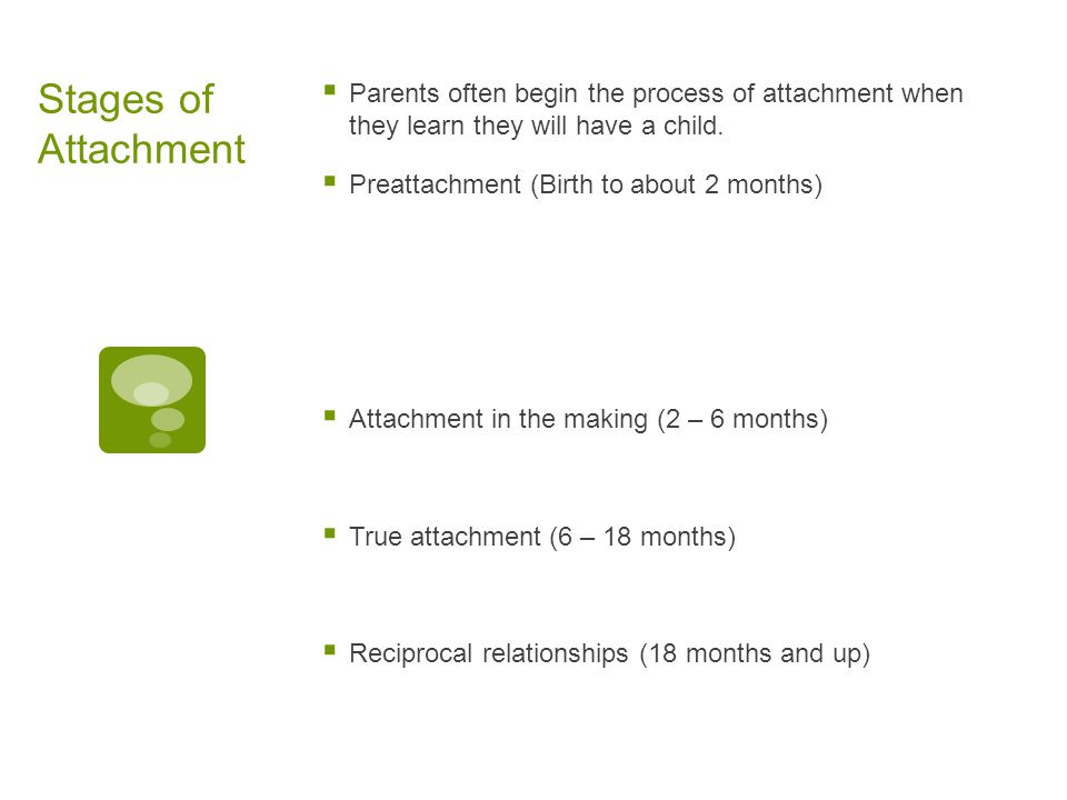 Stages of Attachment Parents often begin the process of attachment when they learn they will have a child.