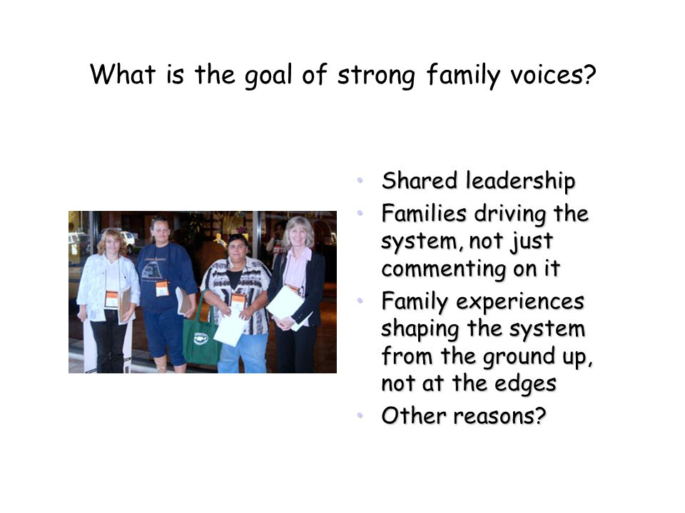 What is the goal of strong family voices