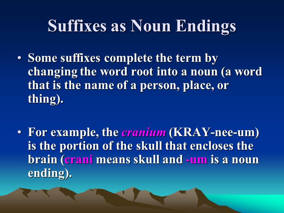 Suffixes as Noun Endings