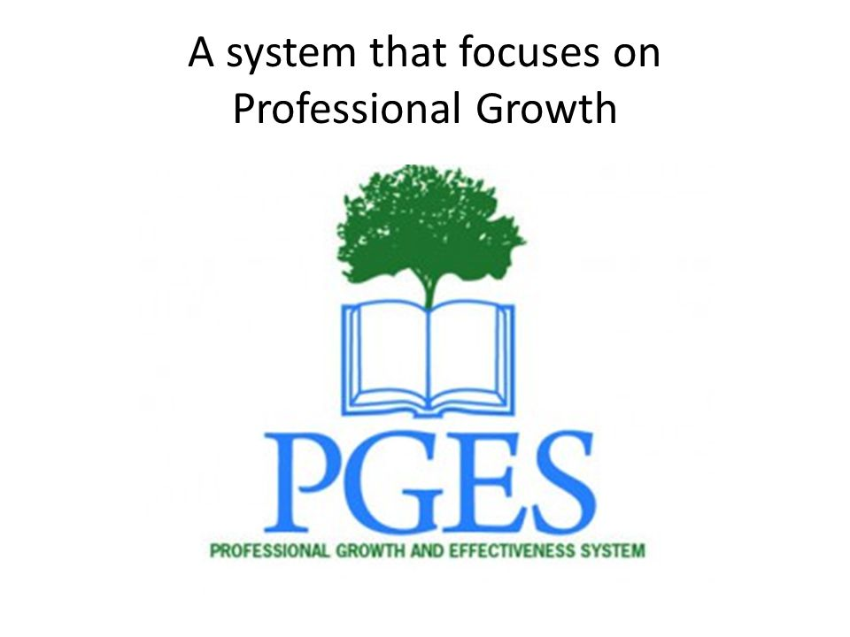 A system that focuses on Professional Growth