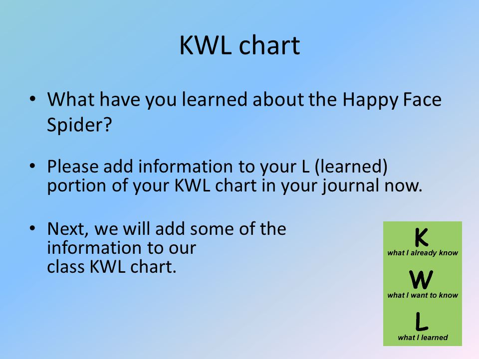 KWL chart What have you learned about the Happy Face Spider