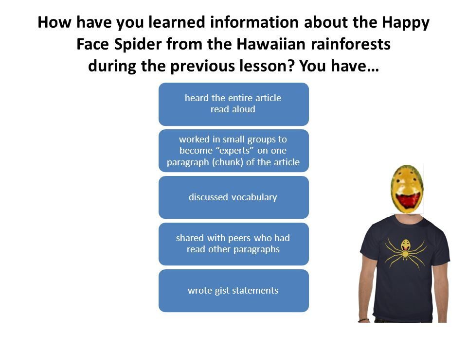 How have you learned information about the Happy Face Spider from the Hawaiian rainforests during the previous lesson You have…