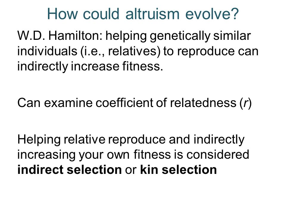 How could altruism evolve