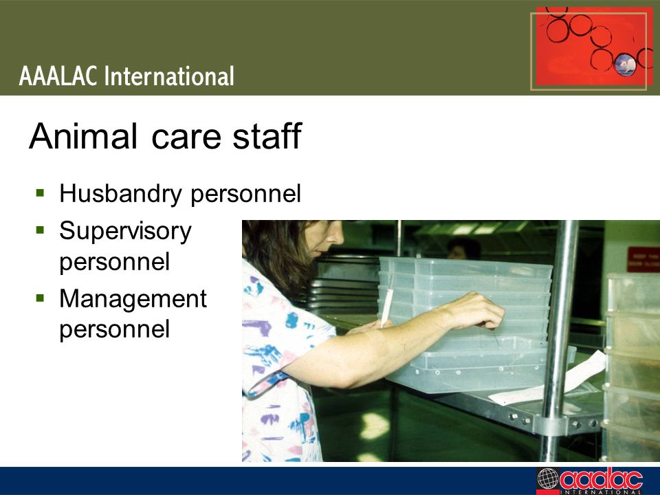 Animal care staff Husbandry personnel Supervisory personnel