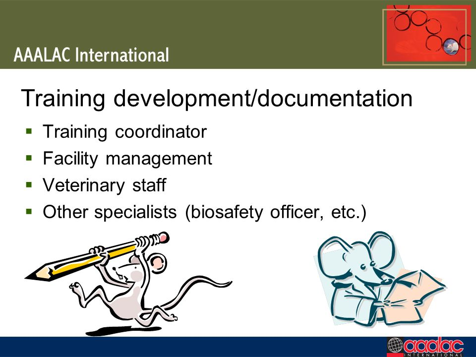 Training development/documentation