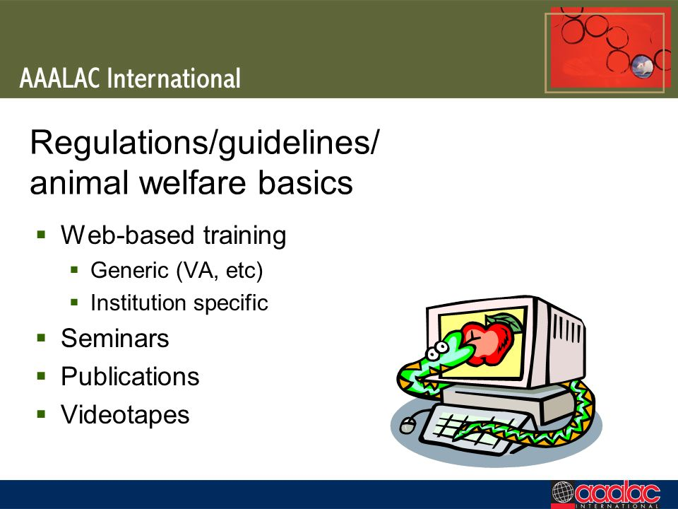 Regulations/guidelines/ animal welfare basics