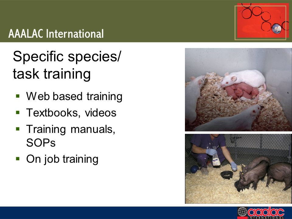 Specific species/ task training