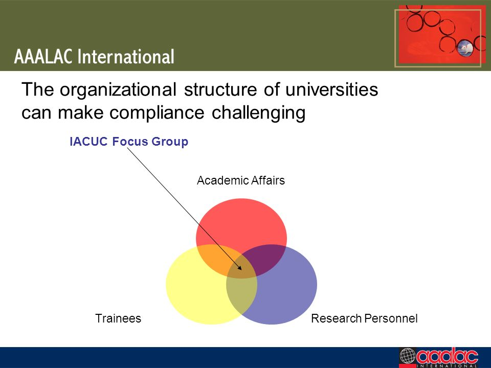 The organizational structure of universities can make compliance challenging