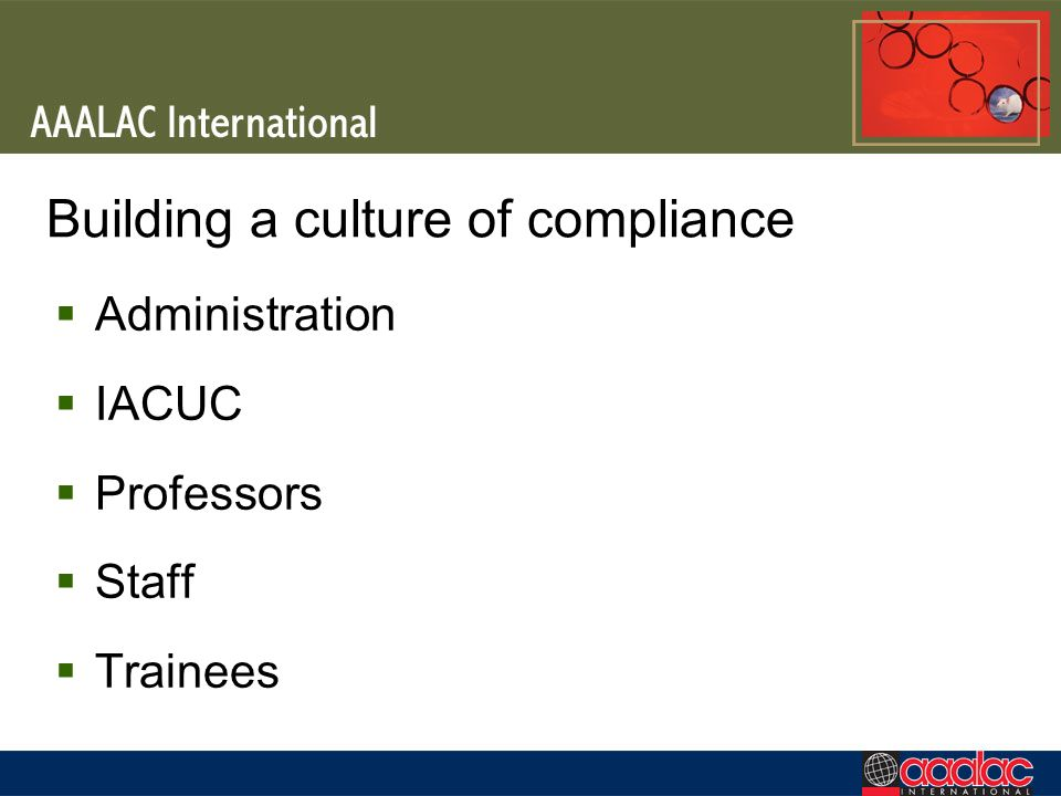 Building a culture of compliance