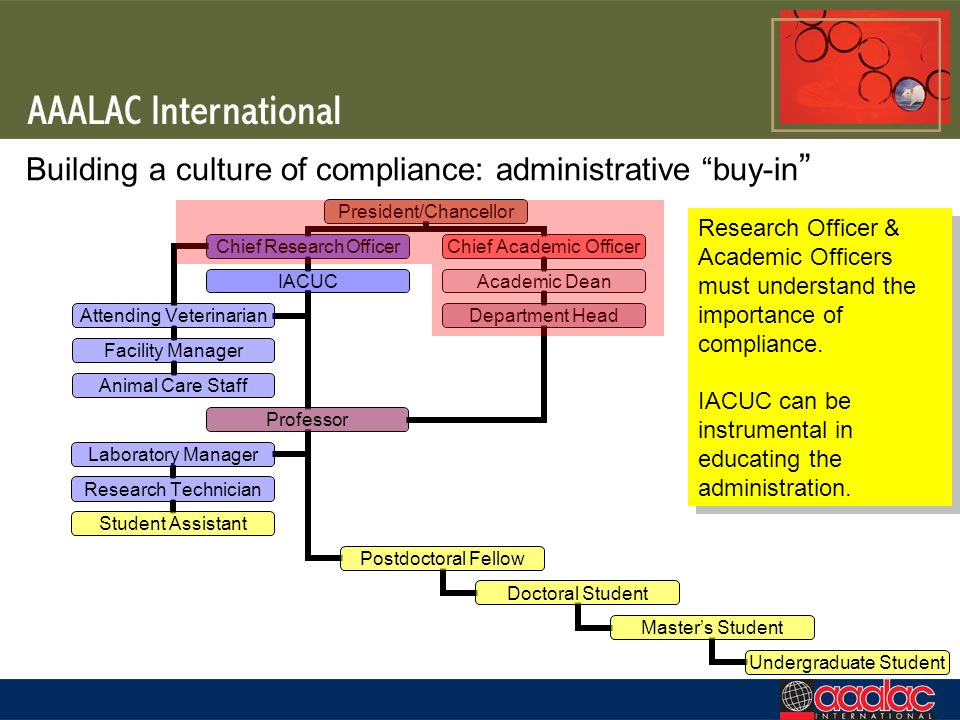 Building a culture of compliance: administrative buy-in