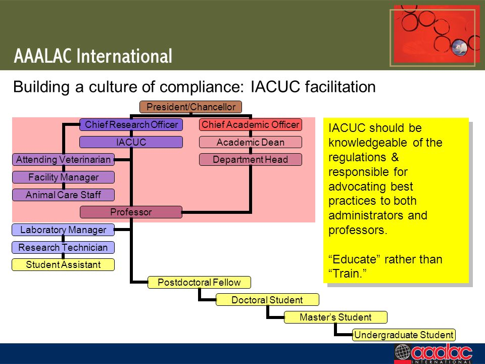 Building a culture of compliance: IACUC facilitation