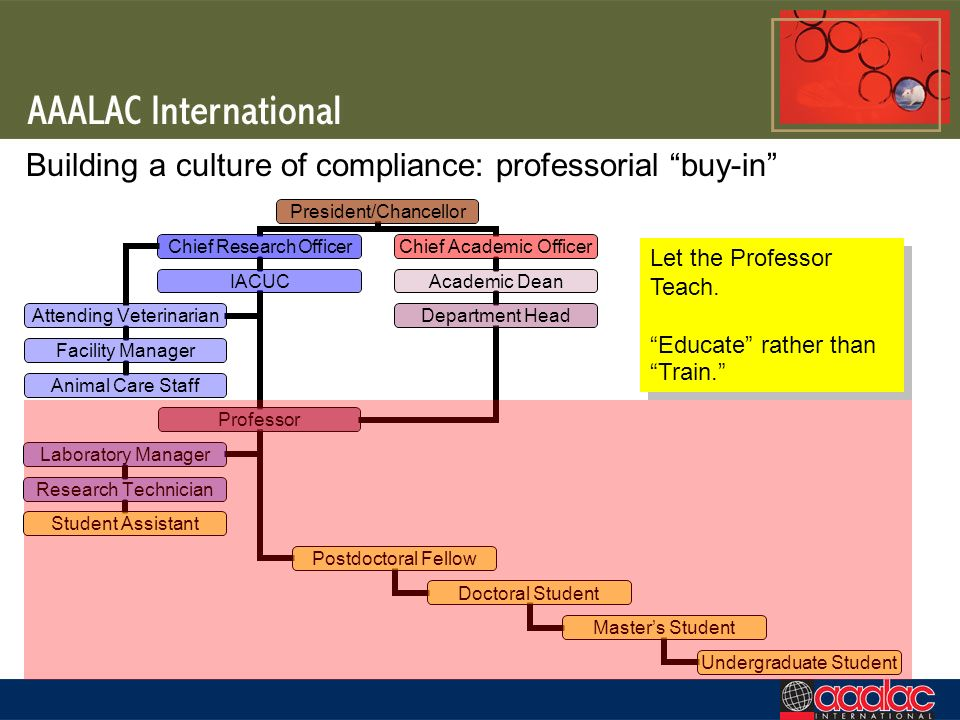 Building a culture of compliance: professorial buy-in