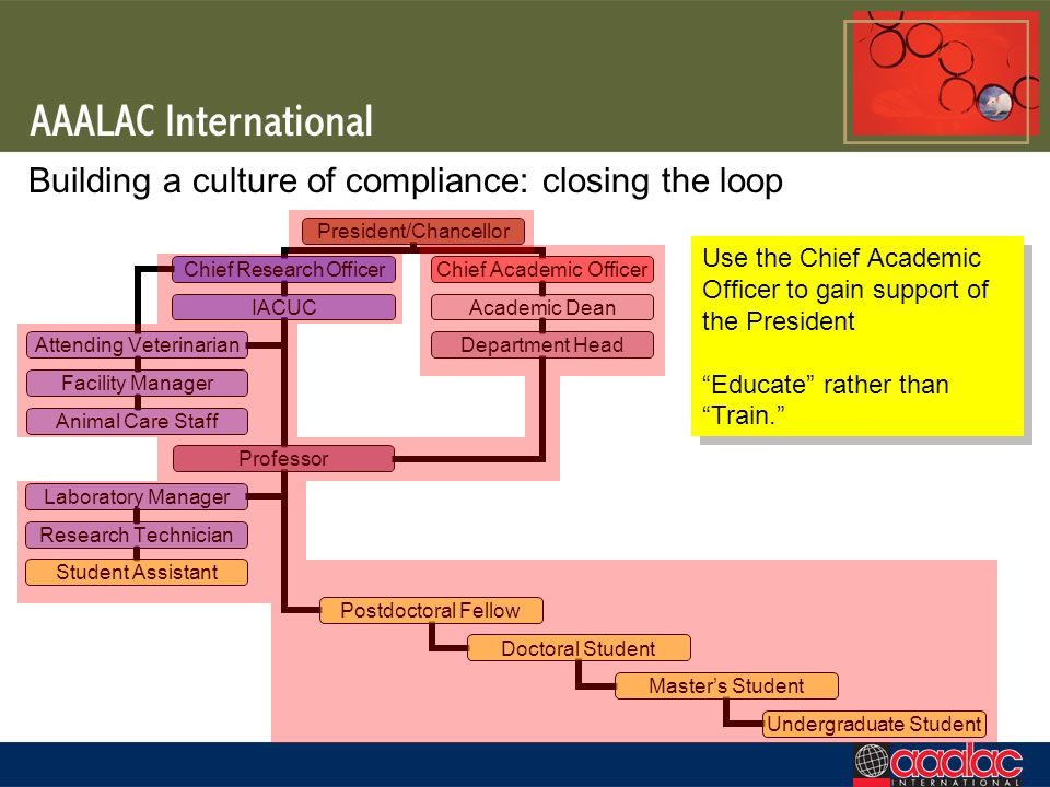 Building a culture of compliance: closing the loop