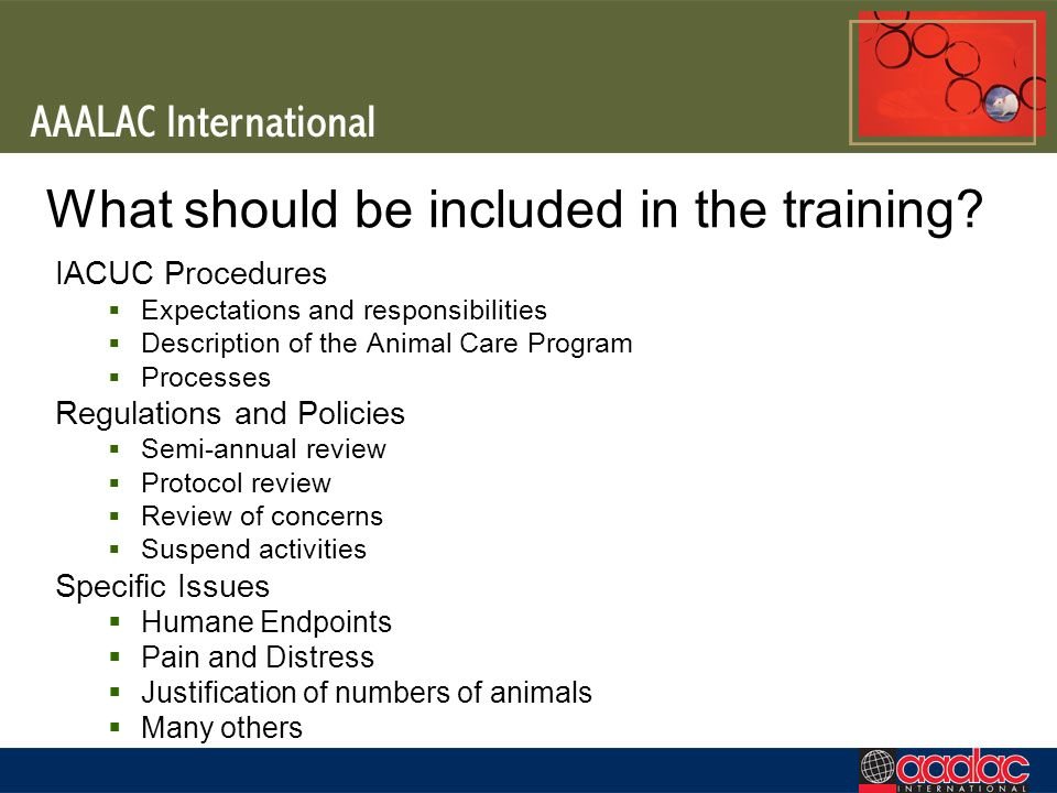 What should be included in the training
