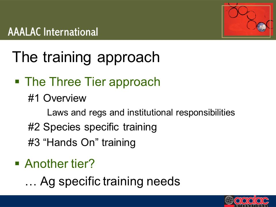 The training approach The Three Tier approach Another tier