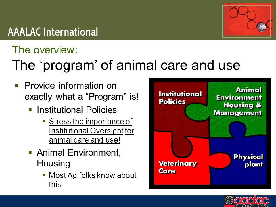 The overview: The 'program' of animal care and use