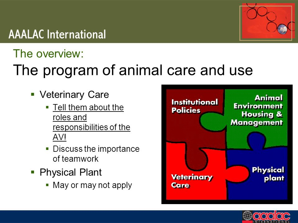 The overview: The program of animal care and use