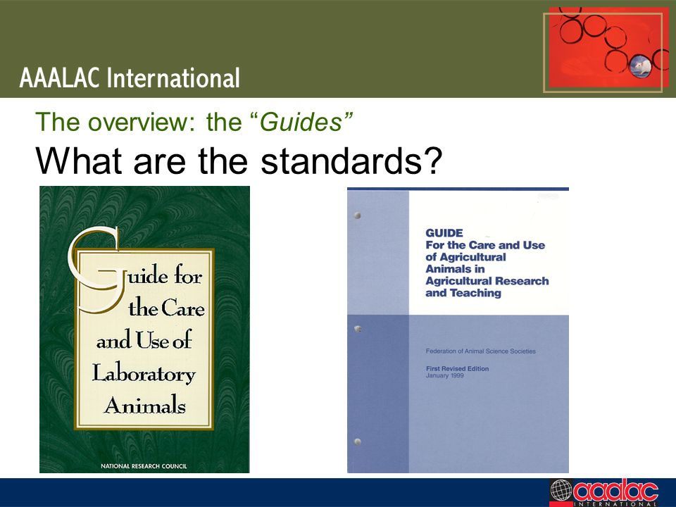 The overview: the Guides What are the standards
