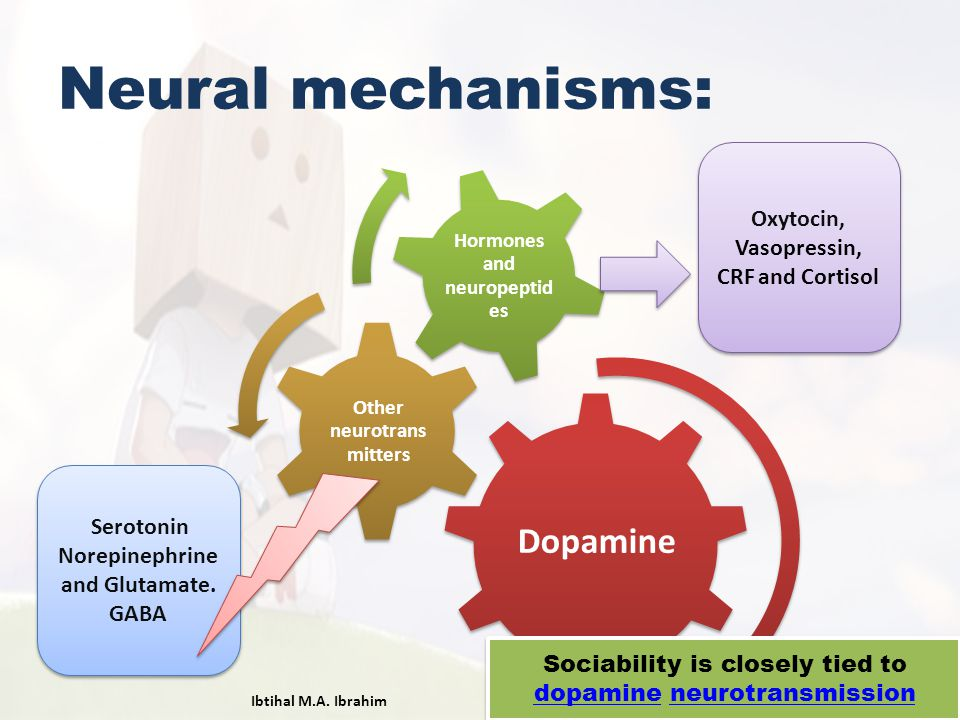 Other neurotransmitters Hormones and neuropeptides