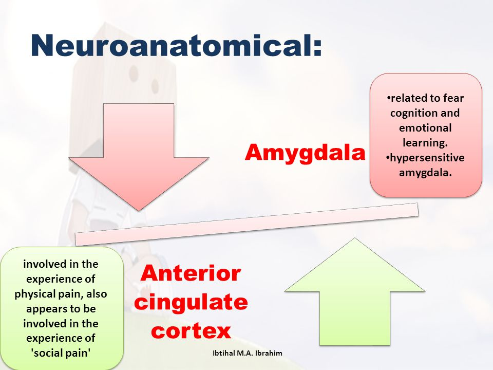 Neuroanatomical: related to fear cognition and emotional learning.