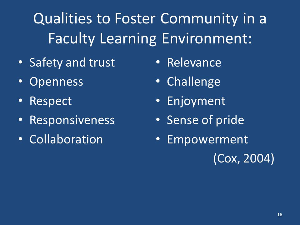 Qualities to Foster Community in a Faculty Learning Environment: