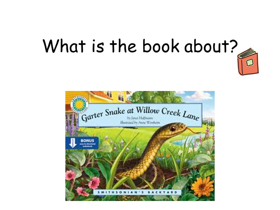 What is the book about