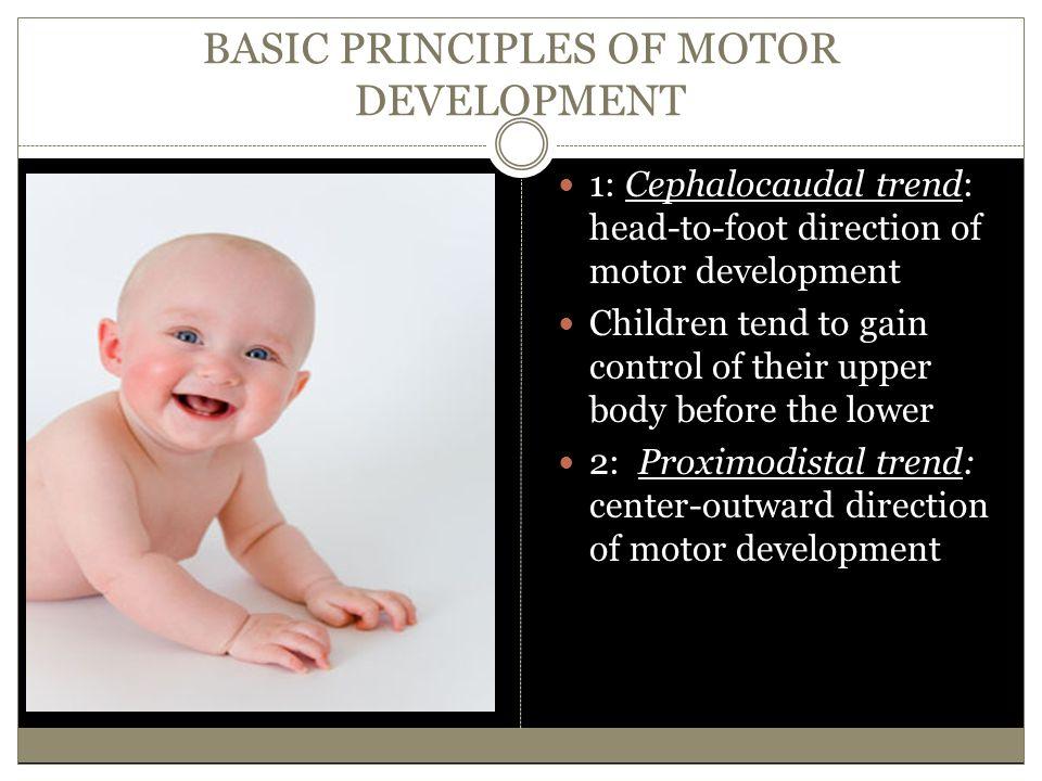BASIC PRINCIPLES OF MOTOR DEVELOPMENT