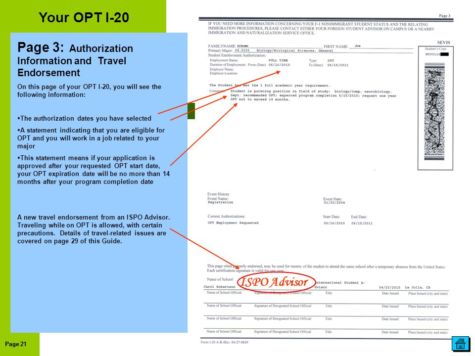 Your OPT I-20 Page 3: Authorization Information and Travel Endorsement
