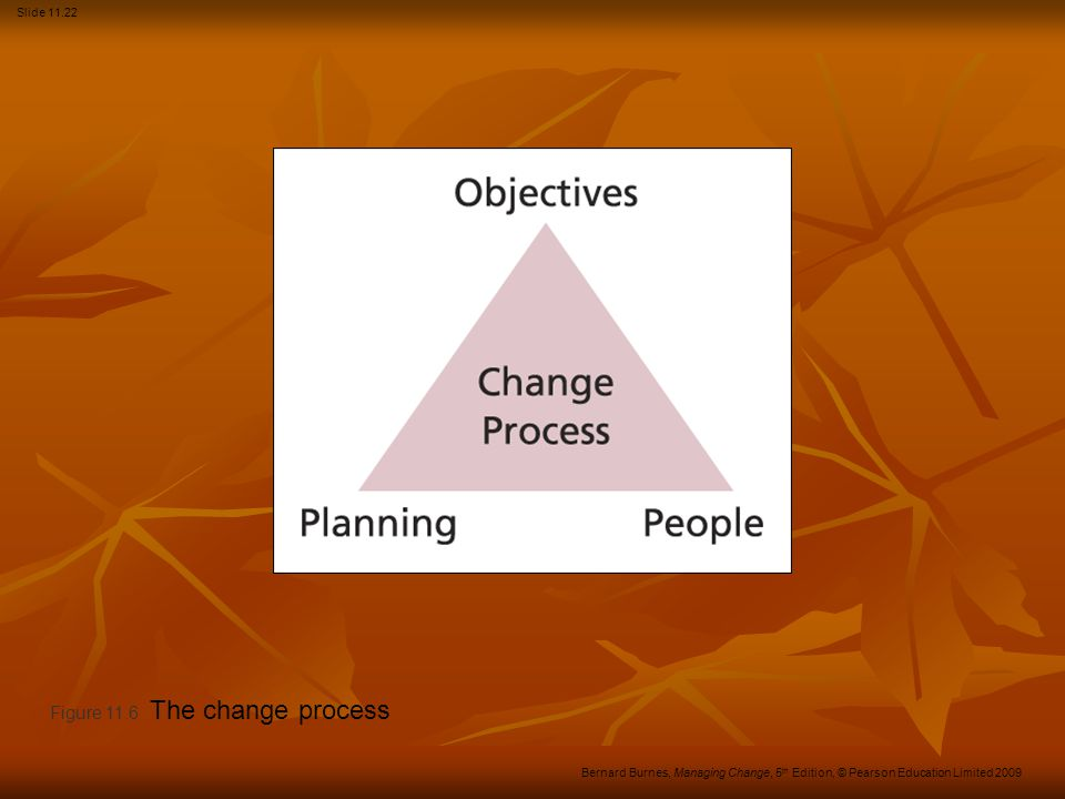 Figure 11.6 The change process
