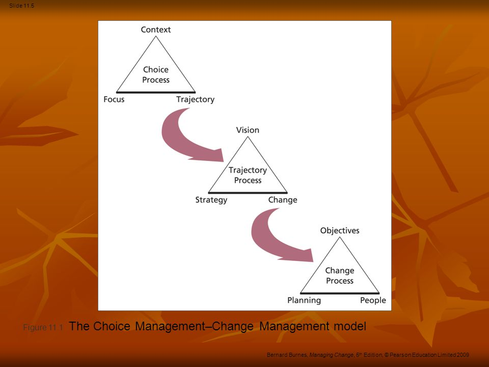 Figure 11.1 The Choice Management–Change Management model