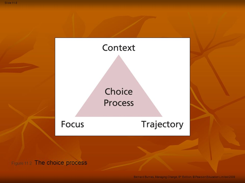 Figure 11.2 The choice process