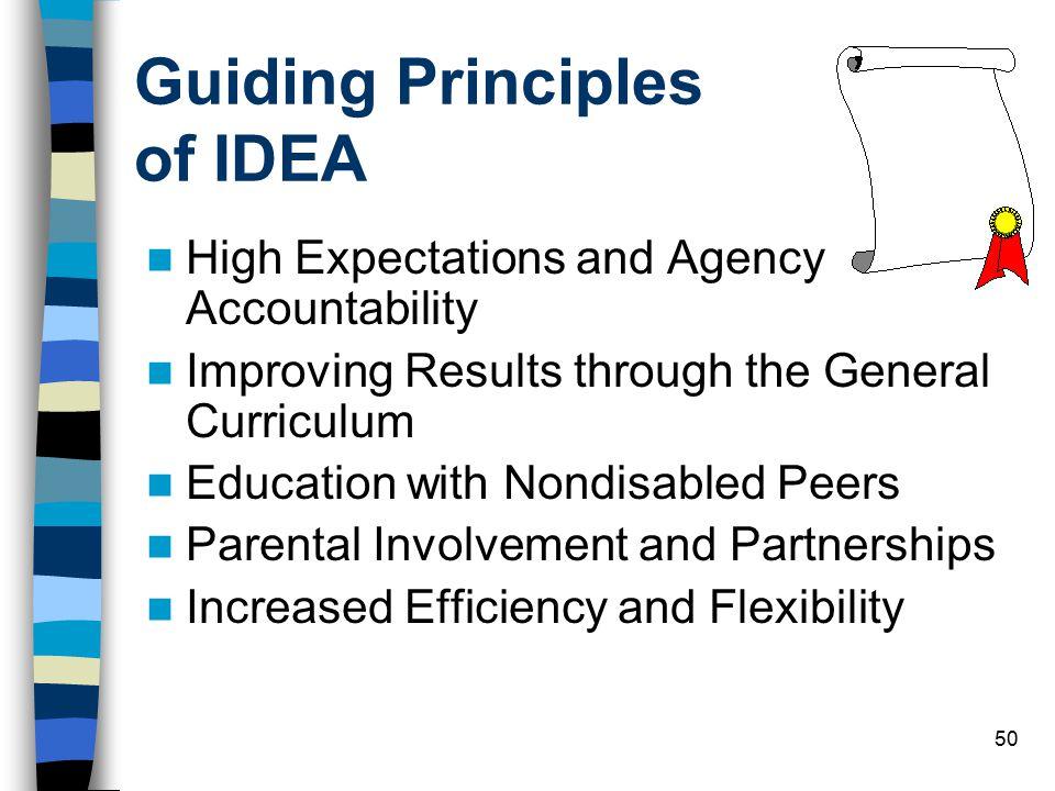Guiding Principles of IDEA