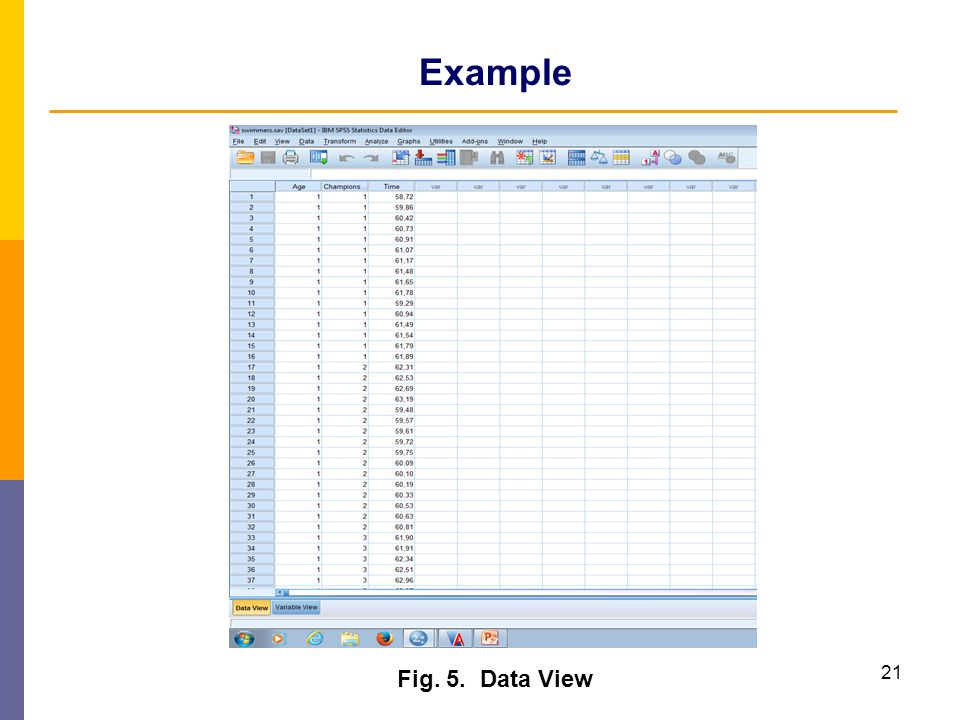 Example Fig. 5. Data View