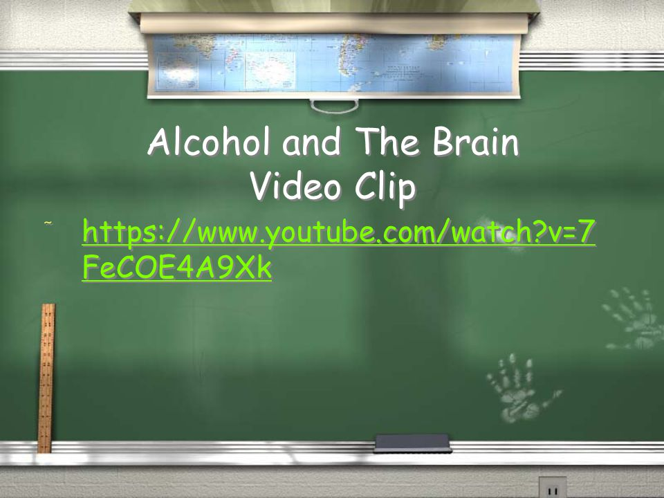 Alcohol and The Brain Video Clip
