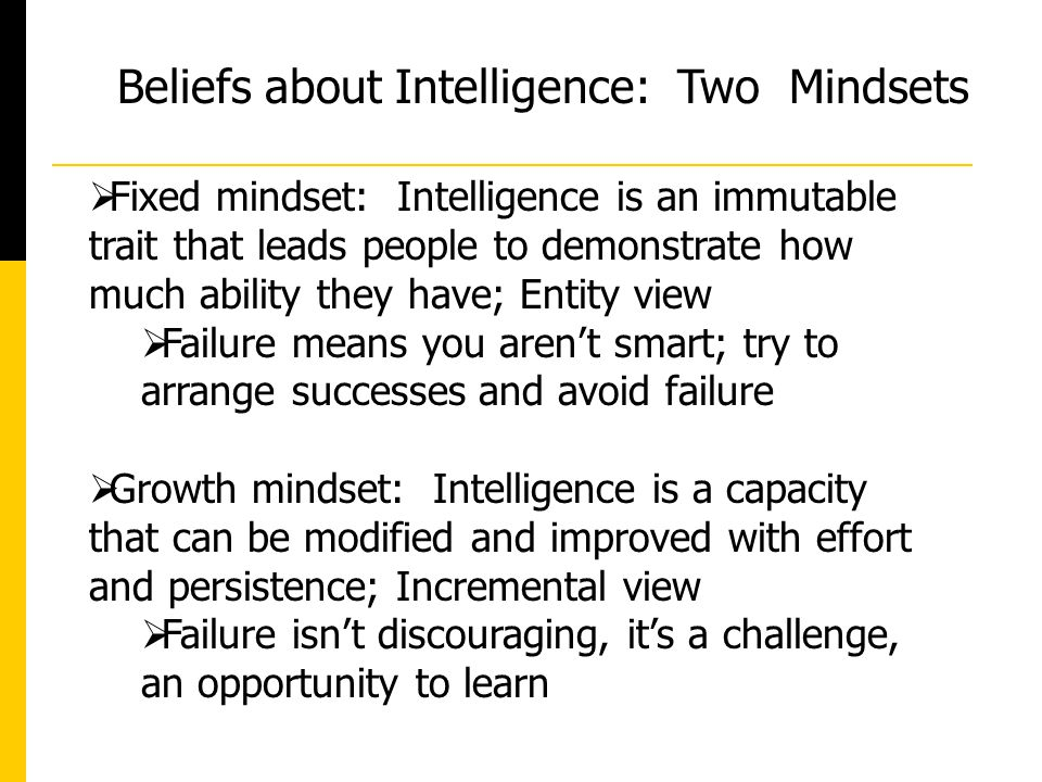 Beliefs about Intelligence: Two Mindsets