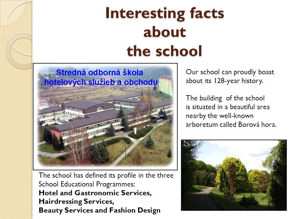 Interesting facts about the school