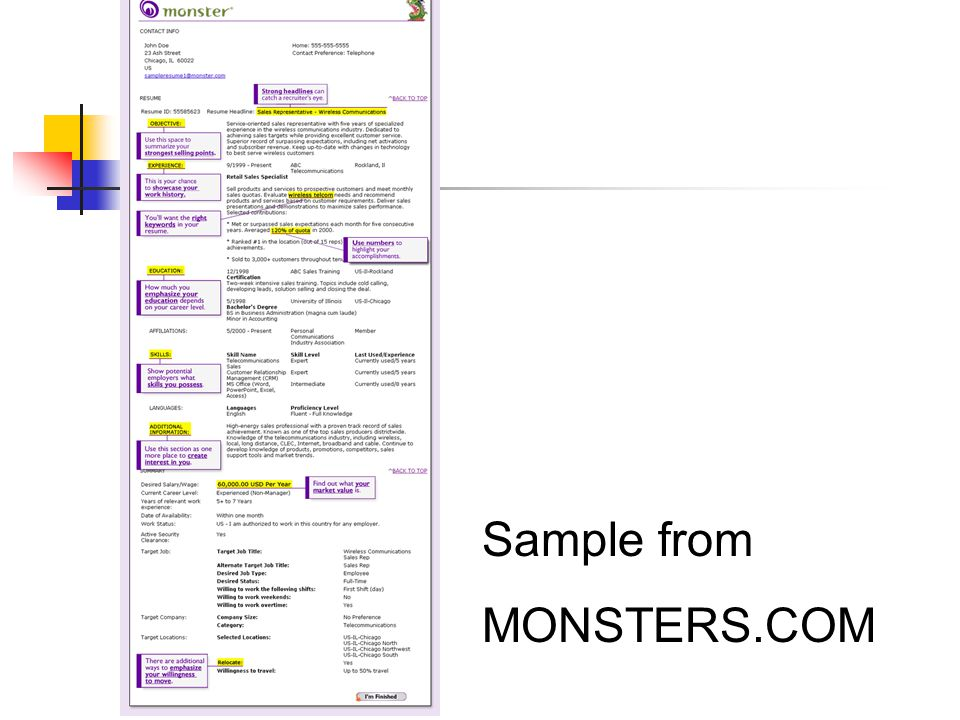 Sample from MONSTERS.COM