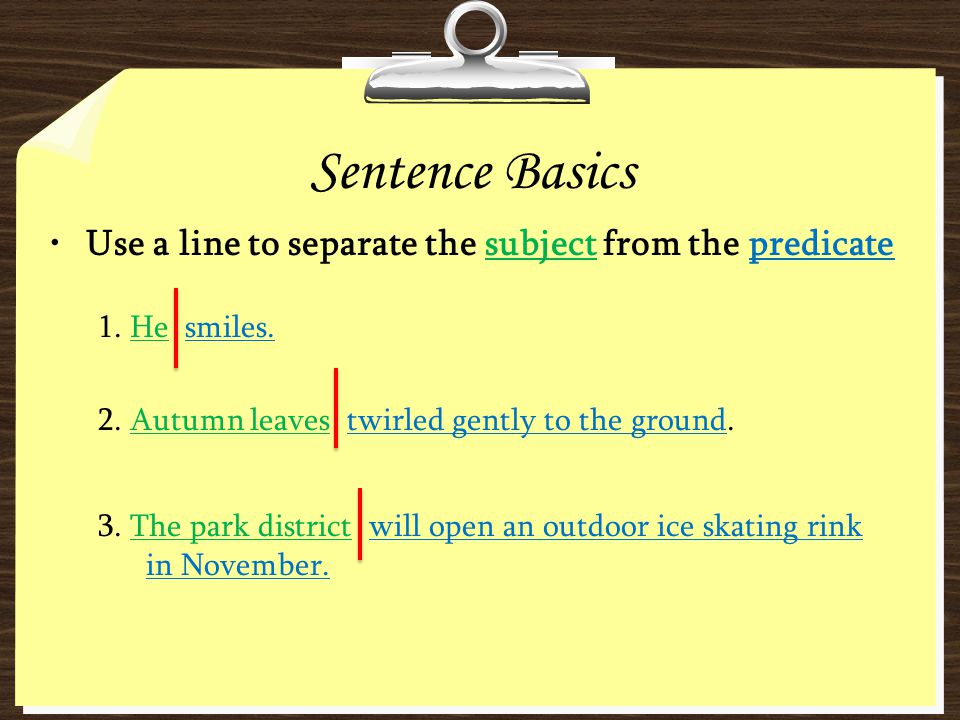 Sentence Basics Use a line to separate the subject from the predicate
