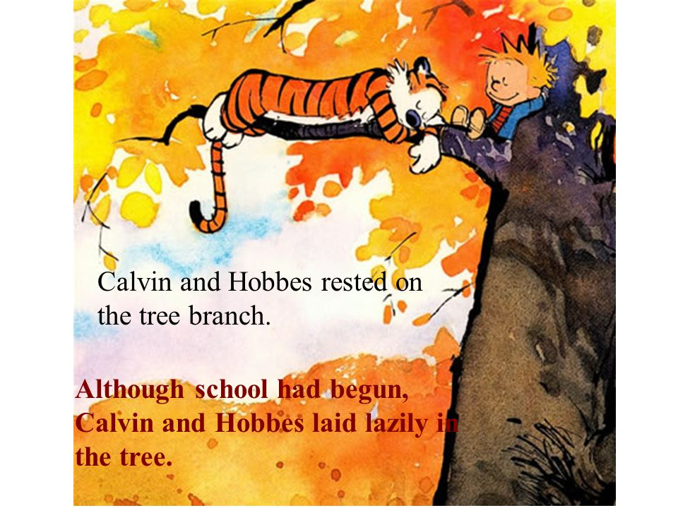 Calvin and Hobbes rested on the tree branch.