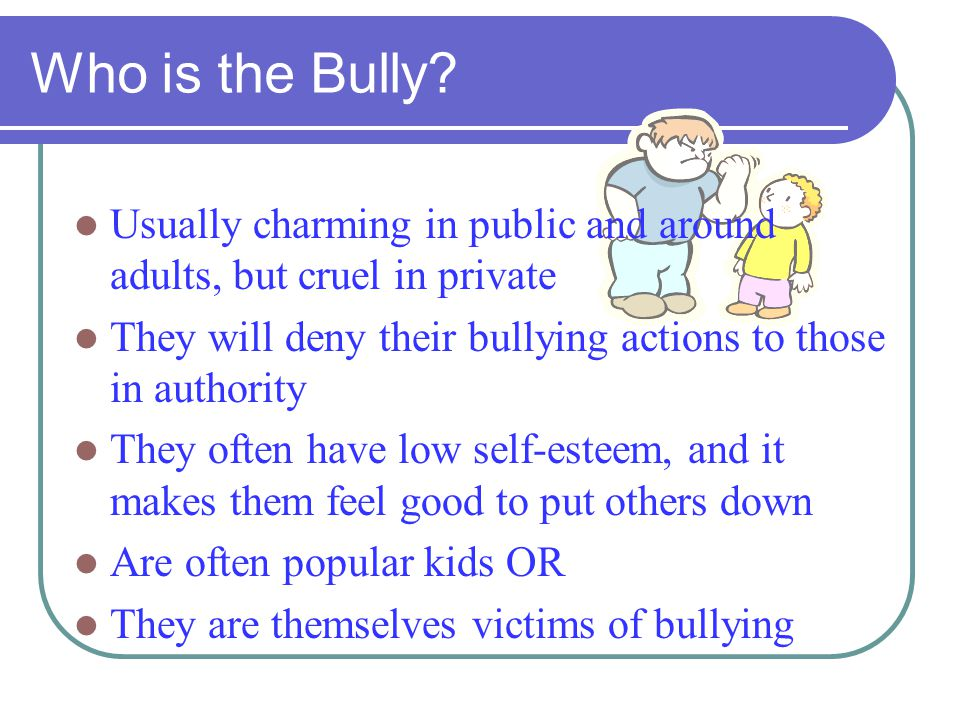 Who is the Bully Usually charming in public and around adults, but cruel in private. They will deny their bullying actions to those in authority.