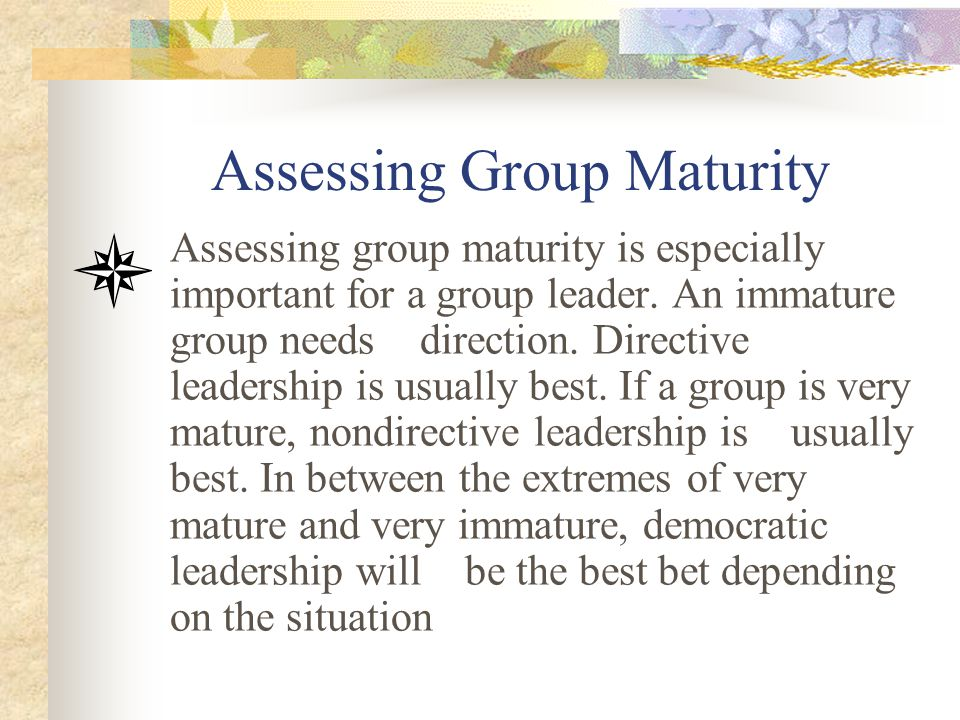 Assessing Group Maturity