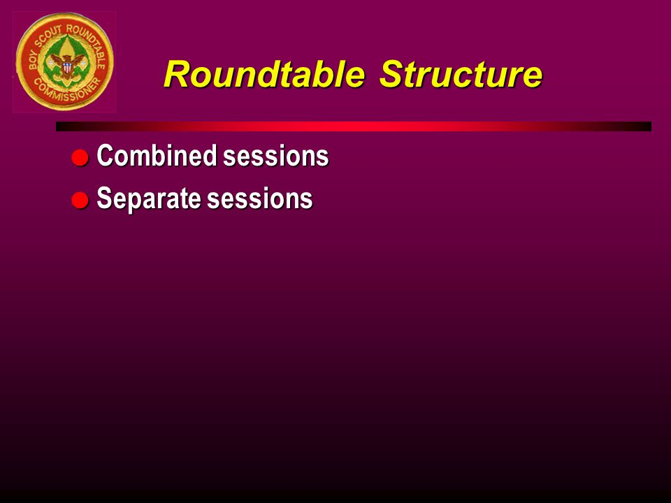Roundtable Structure Combined sessions Separate sessions