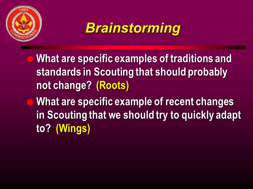 Brainstorming What are specific examples of traditions and standards in Scouting that should probably not change (Roots)