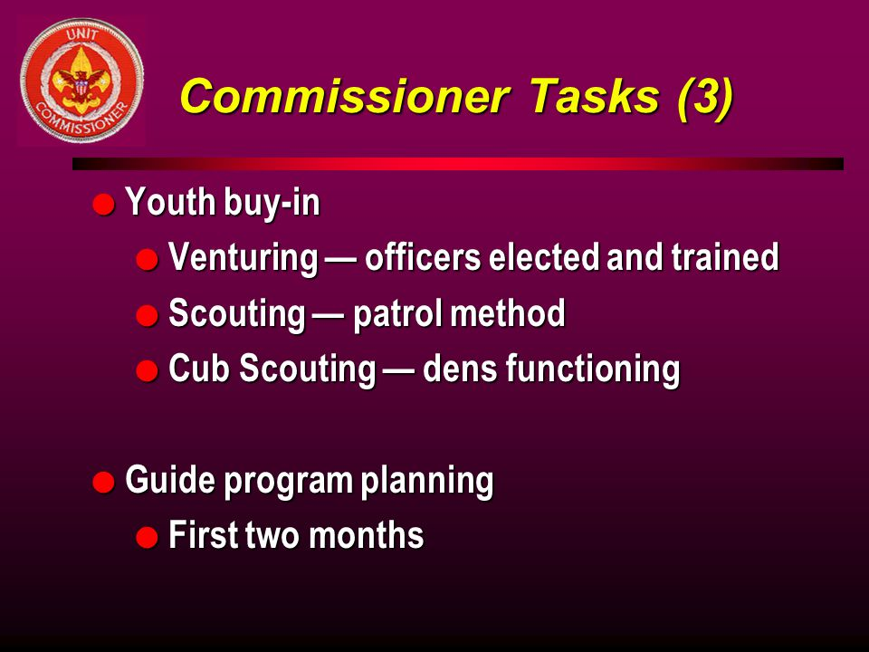 Commissioner Tasks (3) Youth buy-in