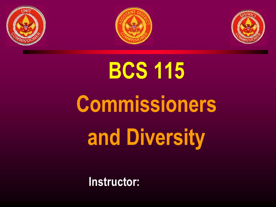 BCS 115 Commissioners and Diversity